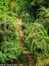 INCA TRAIL (10)
